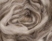Blue Face Leicester Mixed Wool Combed Top for Spinning and Felting, 1 lb