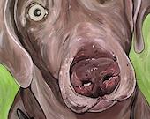 WEIMARANER dog art print gray green bright colors 5x7