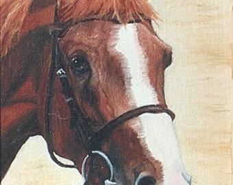 "Print Sale....Equine Art Matted Print 8 x 10 from Original Painting ""CHESTNUT HORSE"" by artist Ann Becker"