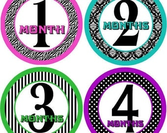 Monthly bodysuit Baby Stickers - Divine Too (Girl Damask, Stripes, Polka Dots, Zebra)
