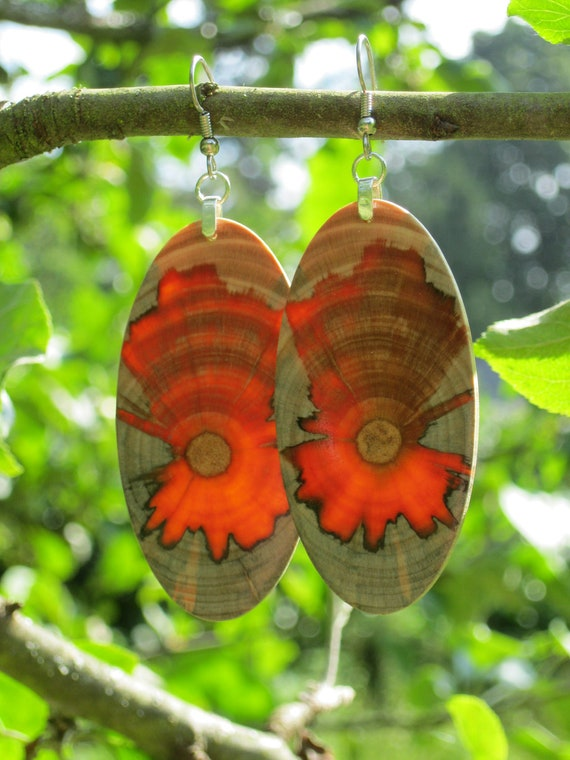 Huge Amazing Super Awesome And Sexy Monkey Puzzle Wood Earrings
