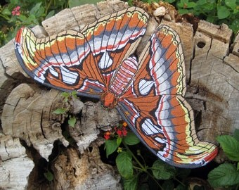 Epic  Life Sized Atlas moth Attacus atlas Snakehead Moth Butterfly Iron on Patch