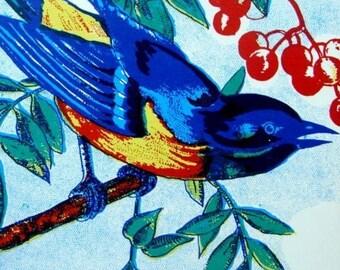 1930s Gorgeous Antique Blue Bird Label Lot of 3