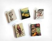 Sea Creatures Book  Charms Set of all Five Marine Biology Octopus Squid Steampunk