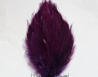 Plum Hackle Feather Pad