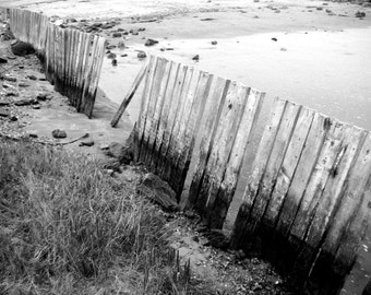 Old Beach Fence 11x14 Fine Art Print