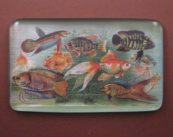 Tropical Fish Aquarium Print Rectangle Decoupage Glass Tile Paperweight Home Decor