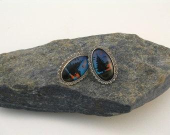 Morpho Butterfly Wing Painting Oval Silver Metal Earrings