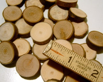100 Small Tree Branch Slices 3 quarter inch Table Confetti Vase Filler