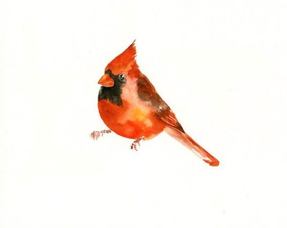 Watercolor Cardinal Tattoo: CARDINAL Original Watercolor Painting 10X8inch