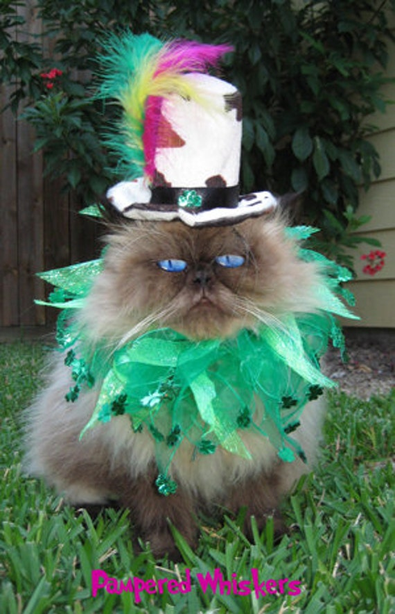Shamrock Shuffle Mad Hatter  pet hat and collar