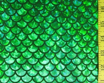 Kelly Large Fish Scale Lycra Fabric