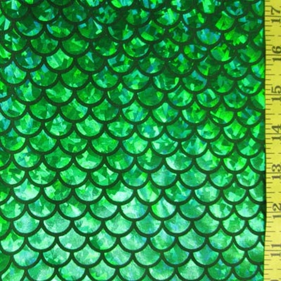 Kelly large fish scale lycra fabric for Fish scale fabric
