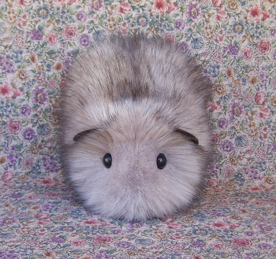 Guinea Pig In Wolf's Clothing