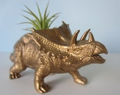 Upcycled Dinosaur Planter - Gold Metallic Triceratops with Tillandsia Air Plant