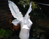 Real Tinkerbell Fairy Wings
