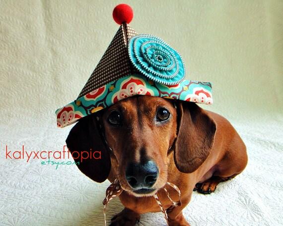 Cute Birthday Party Clown Dog Hat - Polka Dot Cocoa Brown Aqua Tangerine Orange