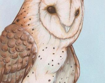 Horned Barn Owl- horned owl fantasy art print