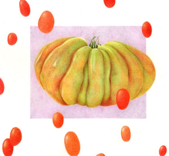 Heirloom Tomato PRINT / Tomato Drawing / Vegetable Art / Tomato Art / Colored Pencil Art / Kitchen Food Print