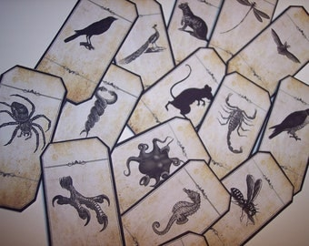 Blank Steampunk Animal Magic Apothecary Labels Set of 15