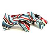 Dog Bow Tie Collar - Ivy League Stripes
