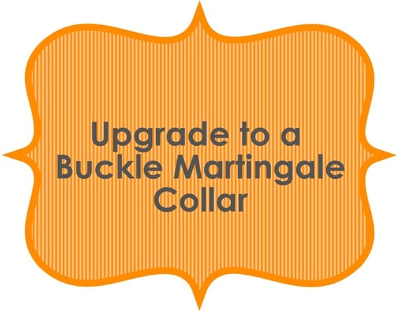 Buckle Martingale Collar - You Pick the Fabric