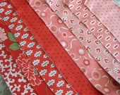 Scrumptious Baby Quilt Kit in red and pink.