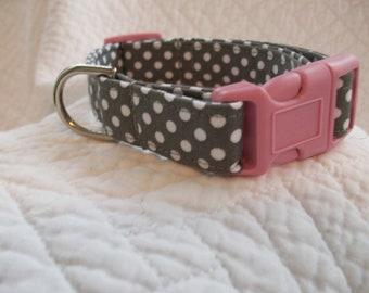 Grey polka dots with pink buckle Dog Collar Custom Made