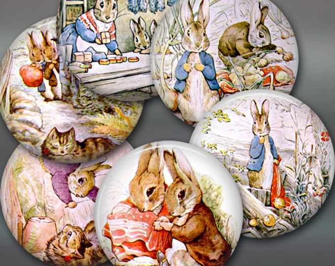 "3.5"" bunny fridge magnets, peter rabbit magnets, beatrix potter decor, set of 6 magnets, kitchen decor, large fridge magnet, magnet set"