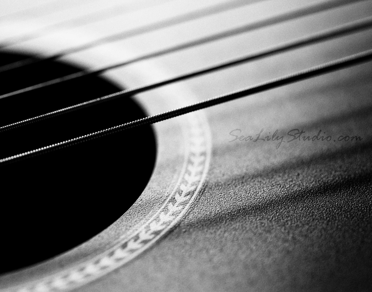 Acoustic Guitar Guitar Photo Black White Macro Photography