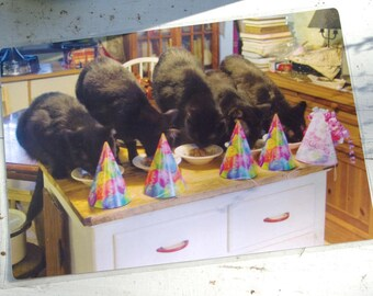 The Birthday Party Laminated Placemat