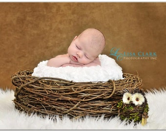 Wood Branch Nest, Owl Nest, Bird Nest, Newborn Nest, Newborn Photography, Baby Photography, Photo Prop, Brown Nest