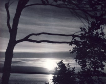 ALASKA SUNSET with Trees and Clouds Over Water Photo Circa 1940s