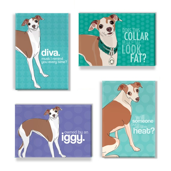 Italian Greyhound Magnet Set - Italian Greyhound Magnets