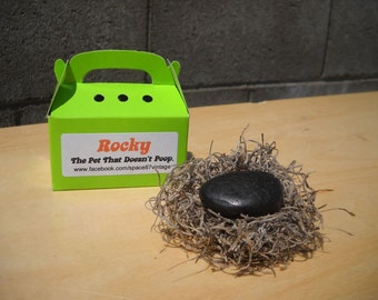 Pet rock - Rocky - the pet that doesn't poop - gag gift