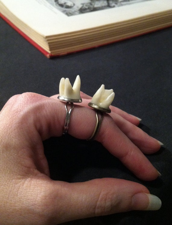 LAST ONE - Tooth Fairy Series: Cameo Setting Adjustable Ring with Real Human Molar Roots in Antique Brass