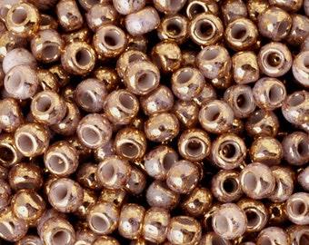 Seed Beads-11/0 Round-1700 Gilded Marble White-Toho-16 Grams