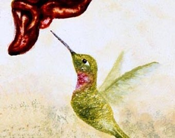 Hummingbird and Flower Kitchen Backsplash Tile insert 4x4 Decorative Tiles