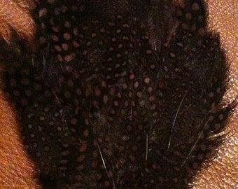Brown Dyed Guinea Feather Pad