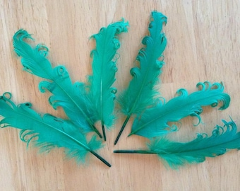 3 Loose Nagorie Feathers - Kelly Green