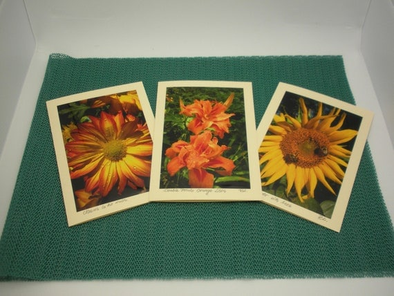 set of three, original photo greeting cards, blank, color insert.