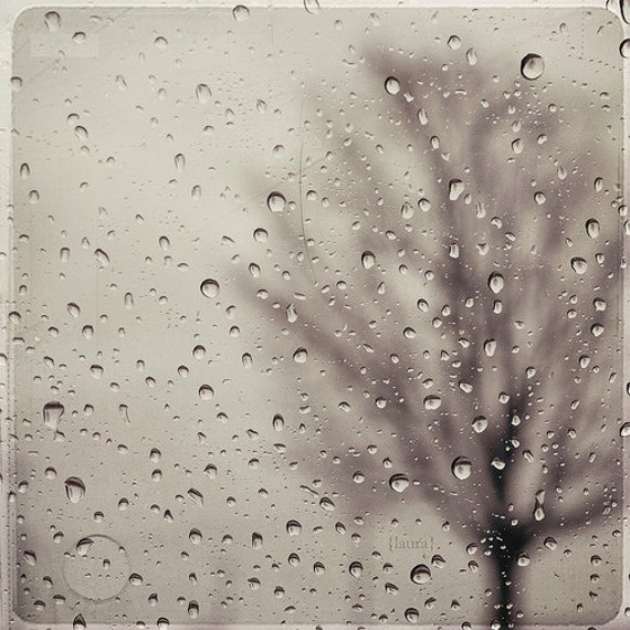 Rain Photograph - Rain Drops - Blur Bare Tree Photograph - Landscape - Black and White - Grey Photo - Home Decor - Fine Art Photography