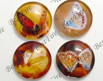 4pcs of the 25mm Round Glass Cabochons Mix Butterfly, jewelry Cabochons finding beads,Glass Cabochons, Butterfly--02