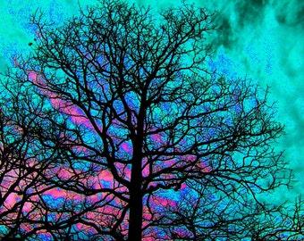 Surrealistic Tree / Surrealistic Landscape / Expressionism / Pink / Blue / Purple / Fine Art Photography