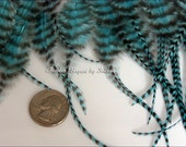Craft Feathers Color Turquoise Feather Craft Supplies Grizzly Feathers Turquoise Striped Feathers Supplies DIY Accessories, 24 pcs