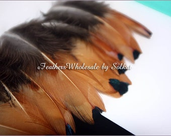Pheasant Feathers Natural Real Bird Plumage Hair Accessories for Braids Earring Feathers Small Craft Feathers Light Brown Feathers, 12 PC