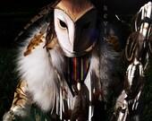 Barn Owl Manitou - FreedomGallery