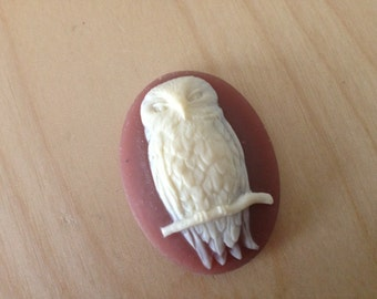 Owl Cameos 40x30mm Resin lot of 3 Brown
