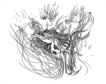 """Bower IV / Giclee print / 8.5"""" x 11"""" / drawing / black and white / ink / modern / abstract / detailed / organic / nature / pen"""