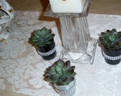 Succulent Artifical Flower Party Favor